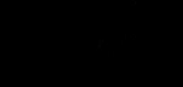 ballreichs logo